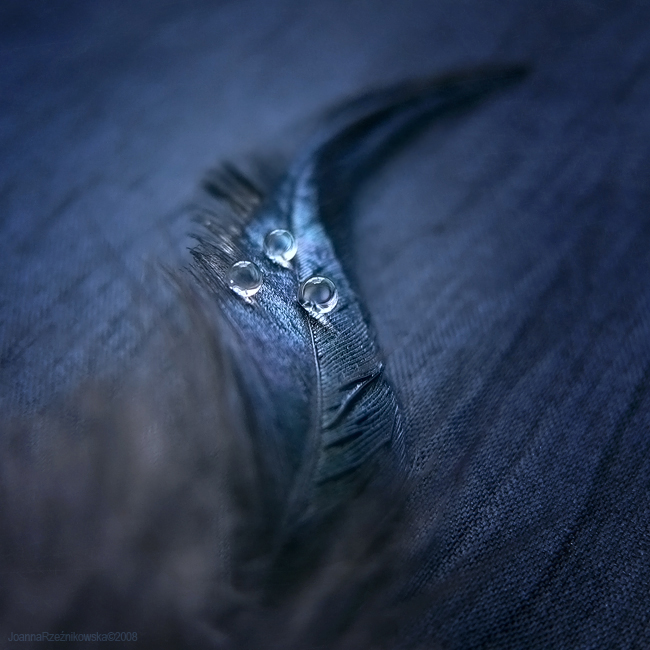 :: I wish :: by JoannaRzeznikowska