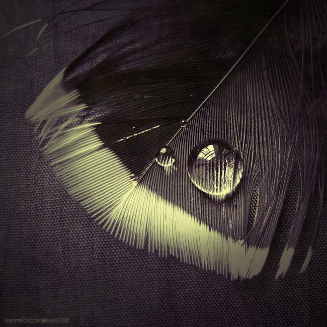 :: I wish IV :: by JoannaRzeznikowska