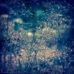 meadows of glory by JoannaRzeznikowska