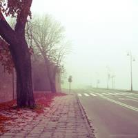 I'm lost. Find me II by JoannaRzeznikowska