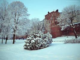 City Of Winter VI