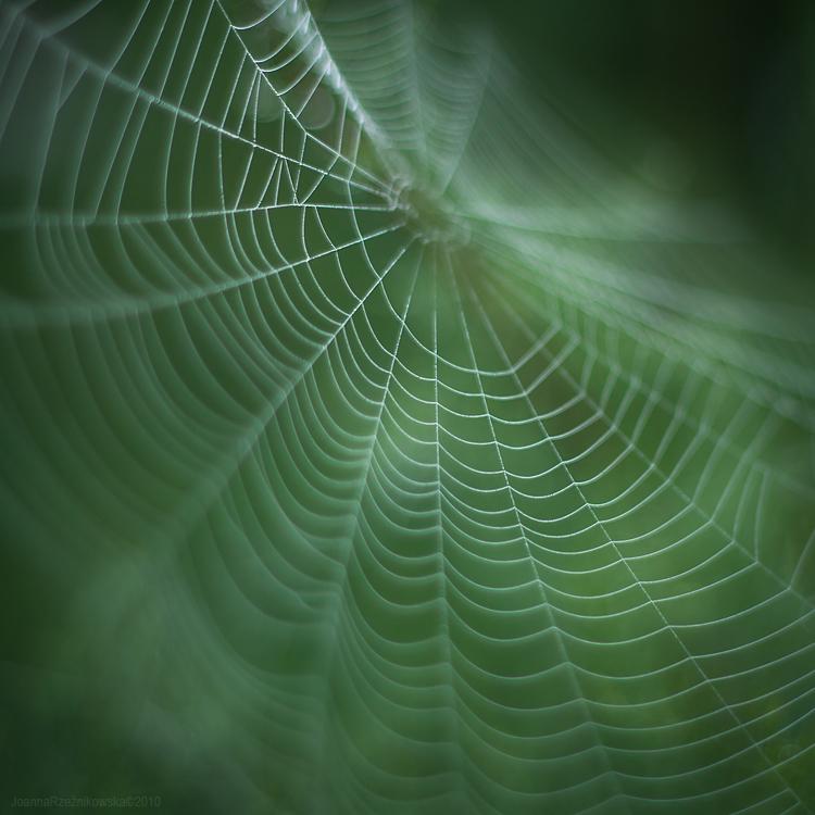 souls of september III by JoannaRzeznikowska