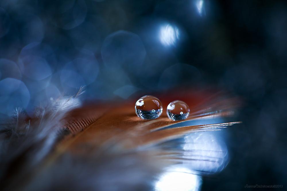 liquid feelings II by JoannaRzeznikowska