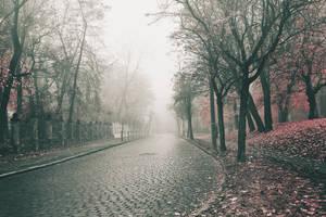 exploring dreams III by JoannaRzeznikowska
