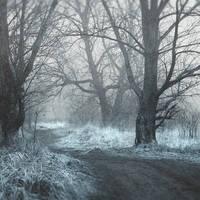 frozen memories IV by JoannaRzeznikowska