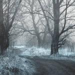 frozen memories IV