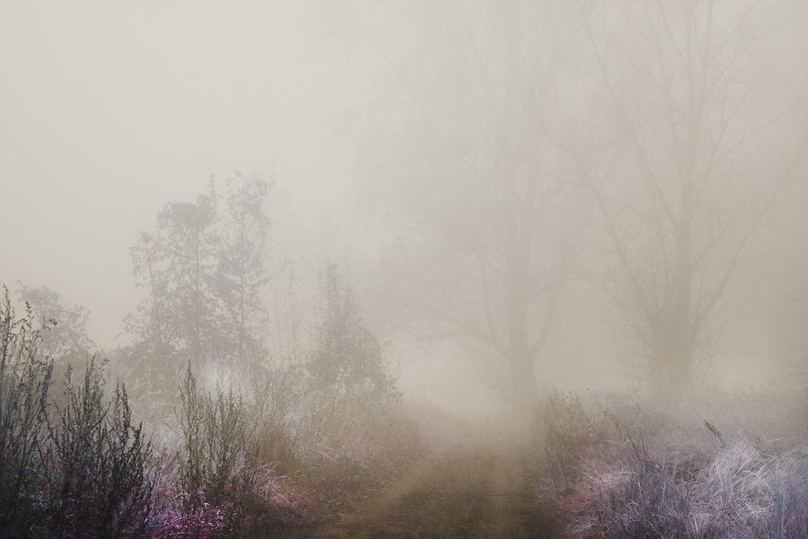wandering of souls XX by JoannaRzeznikowska