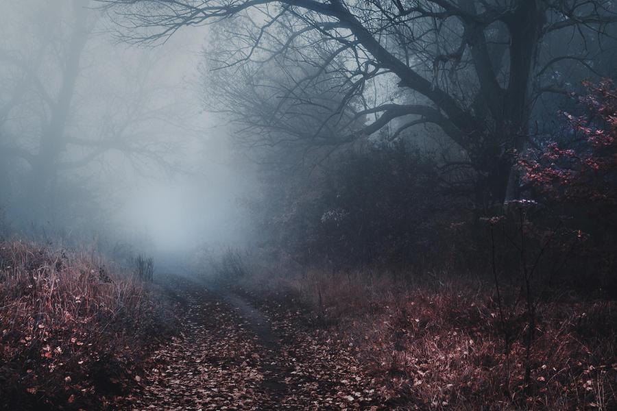 the shelter of the fallen souls by JoannaRzeznikowska