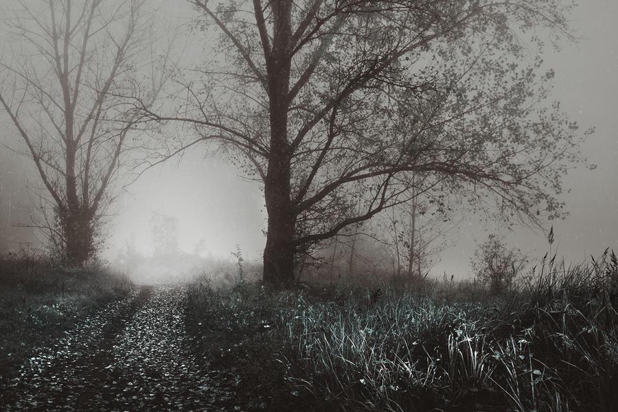the shelter of the fallen souls III by JoannaRzeznikowska