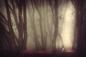 the shelter of the fallen souls VIII by JoannaRzeznikowska