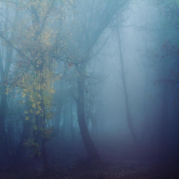 the shelter of the fallen souls IX by JoannaRzeznikowska