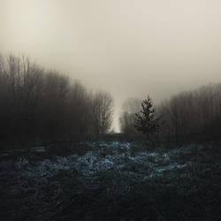 evoke the dark II by JoannaRzeznikowska