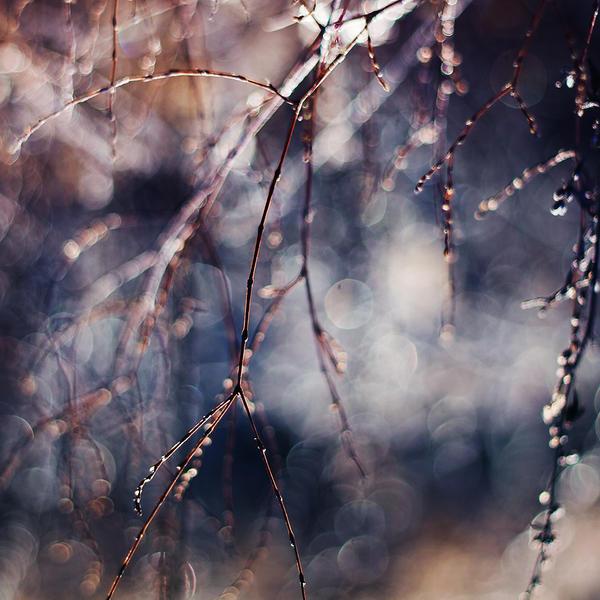 finding light II by JoannaRzeznikowska