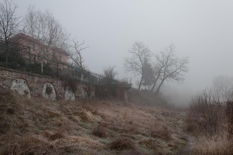 misty morning XVI by JoannaRzeznikowska