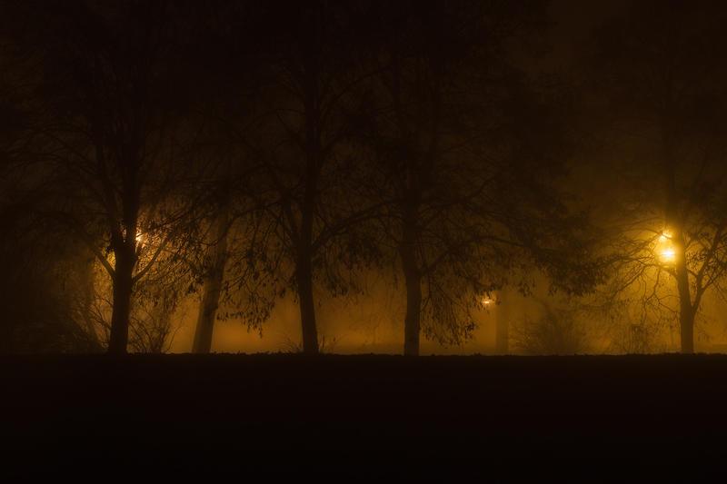 feel the night, feel the mist by JoannaRzeznikowska