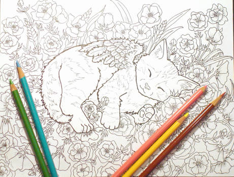 Sleeping Kitty Coloring Book Page