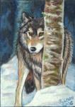 PEEK-A-BOO Wolf