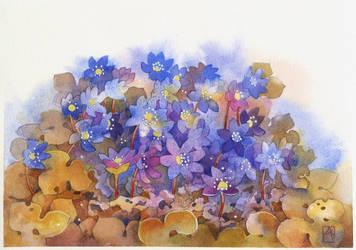 Blue flowers by isletree
