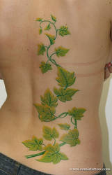 Ivy On The Back