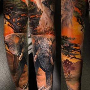 Color elephant tattoo