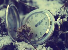 Desolate Time