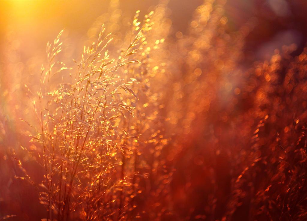 Solar Wind by MarsiaMS