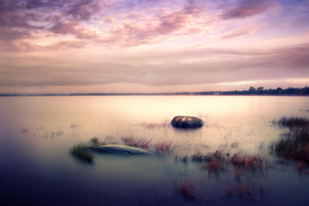 Till Dawn by MarsiaMS