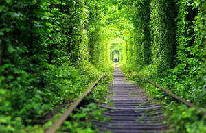 Love Tunnel by MarsiaMS
