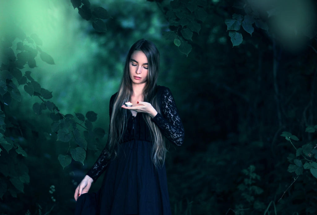 Follow the Ravenheart by MarsiaMS