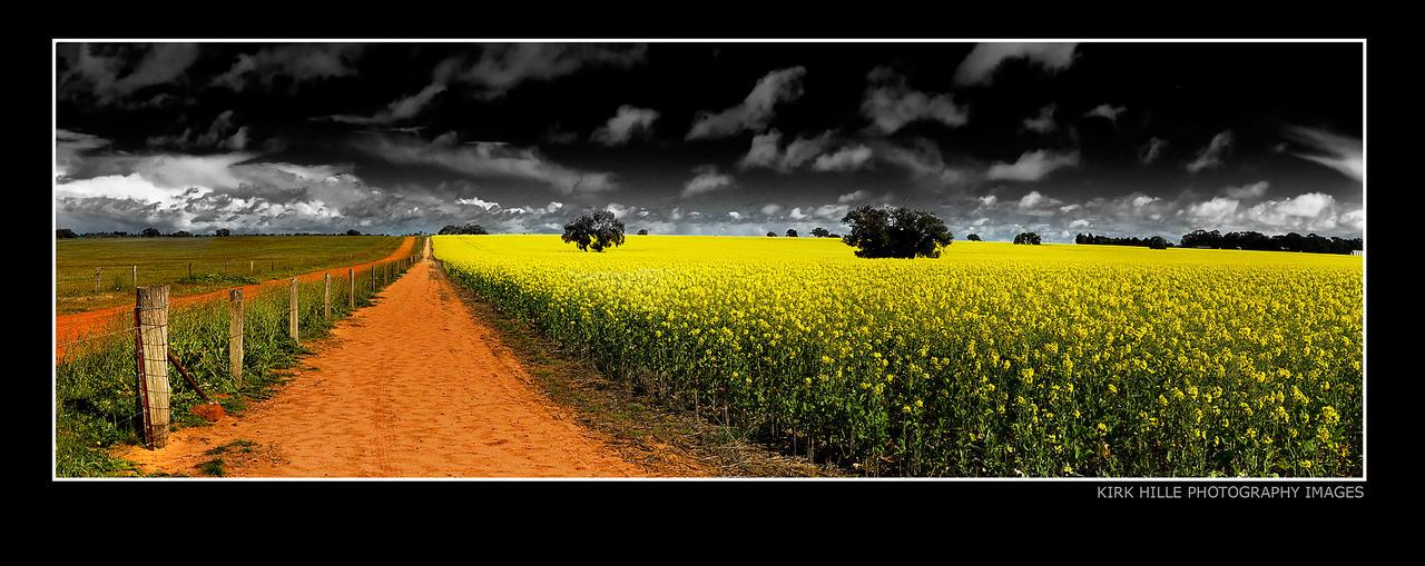 Conola Fields