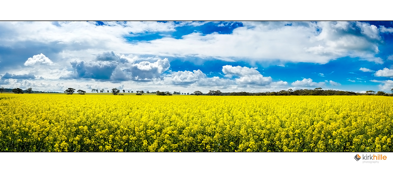 Conola Fields II by Furiousxr