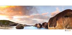 Elephant Cove II