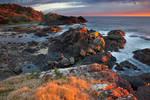 New South Wales Coast