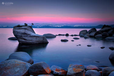 Lake Tahoe - United States - Bonsai Rock