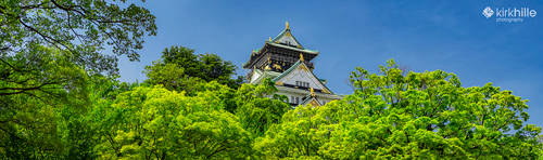 Osaka Castle - Japan by Furiousxr