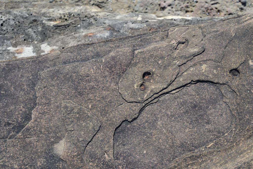Durras Rocks by Rhyton