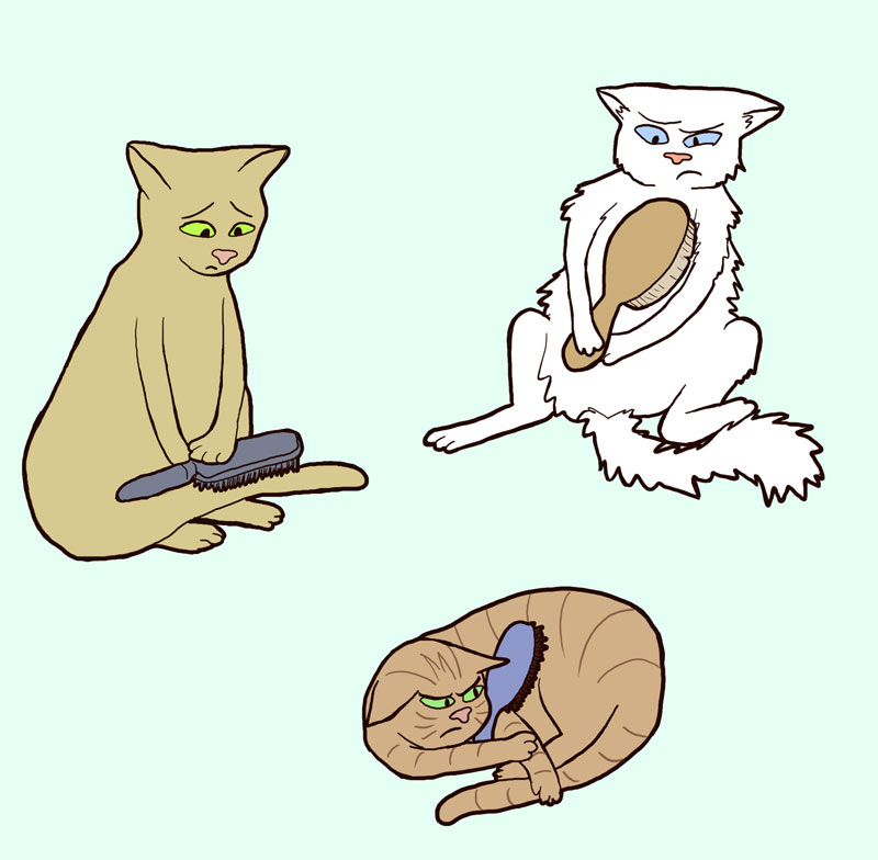 Cats with brushes by sqbr