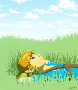 Breath of the Wild: Link Rests