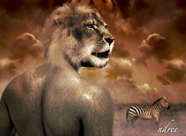 tigerman by dzoy