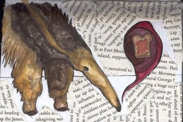 Anteaters love toast