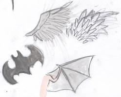Wings Study