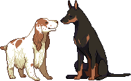 dogs by uiri