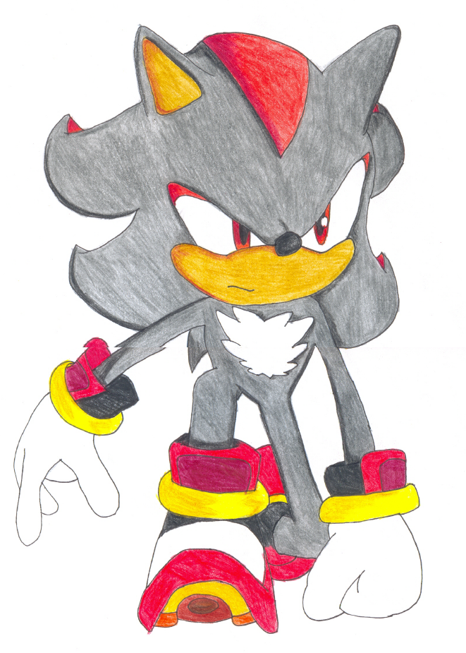 Shadow The Hedgehog by TerryRose