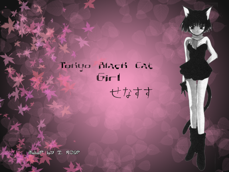 Tokyo Black Cat Girl :desktop: by TerryRose