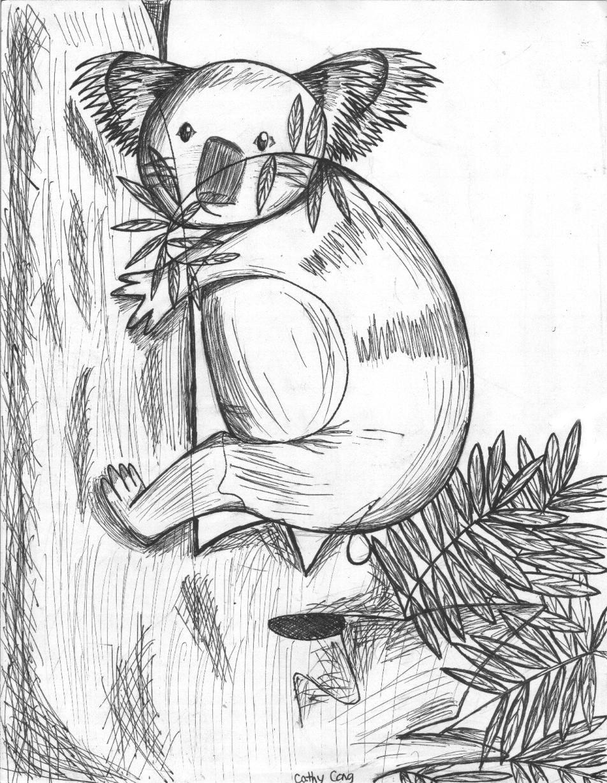 Line Drawing Koala : Koala drawn from scribbles by celede on deviantart