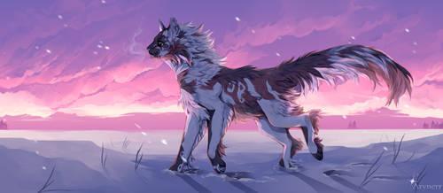 Winter sunset [Commission]