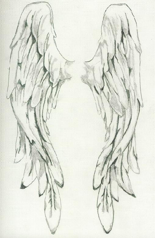 Angel Wings by Grievious on DeviantArt
