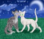 Cats-Warriors: Jayfeather x Halfmoon
