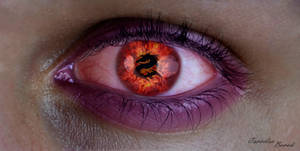 Dragon EYE by xarocx