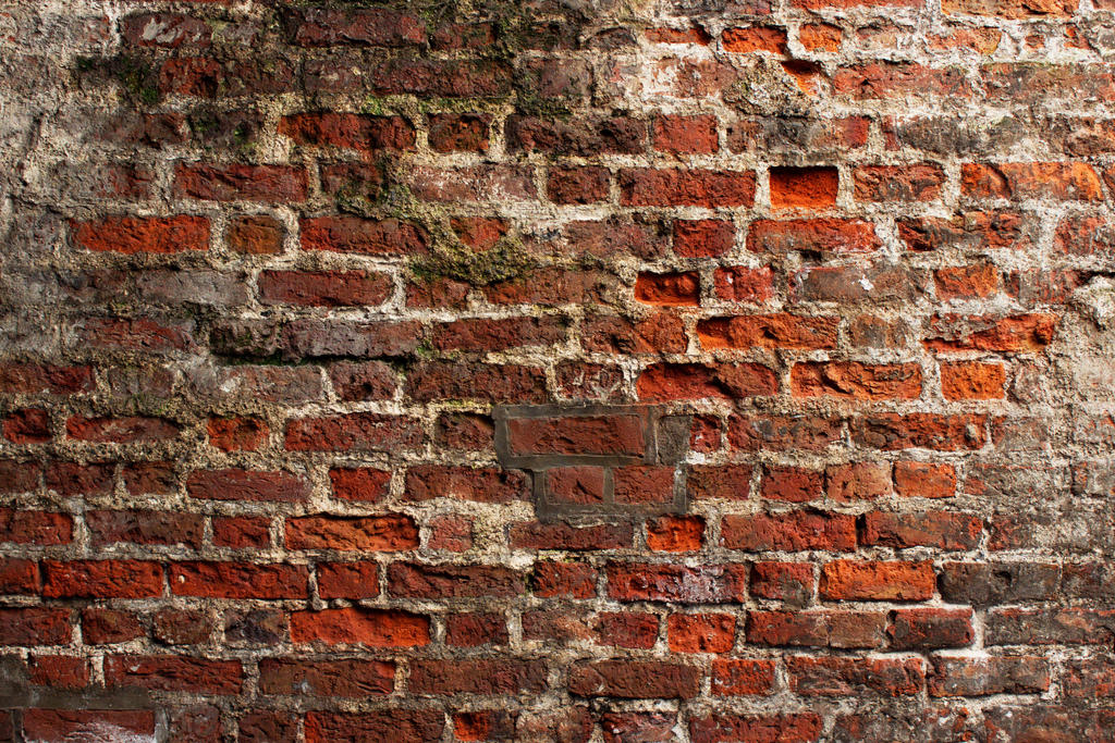 Old Brick Wall 1 by RSFFM